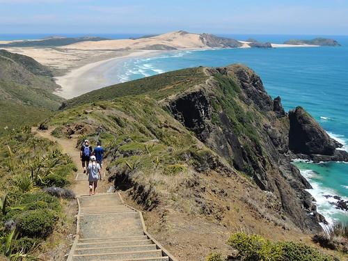 Cape reinga landscape new zealand hundreds of tourists for Landscape jobs nz