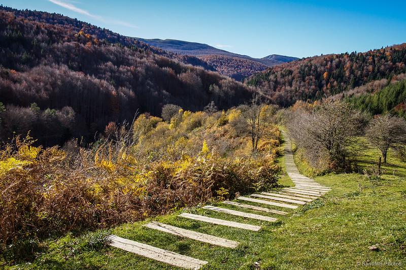 La Selva de Irati desde la ermita de Nuestra Señora de las Nieves