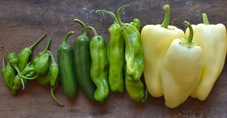Shishito-Padron-Jalapeno-Gypsy-Peppers-All | by Farm Fresh To You -