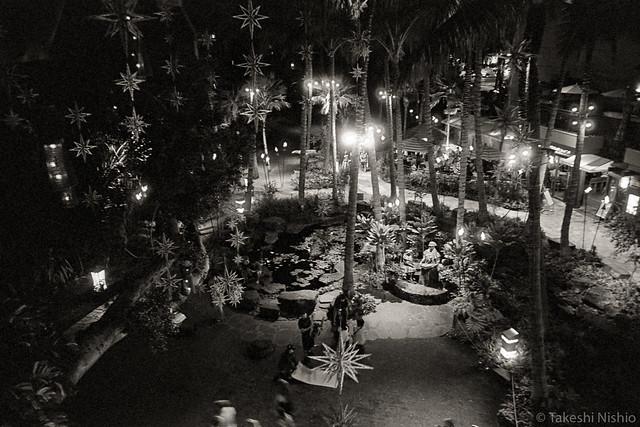 Christmas stars at Royal Hawaiian Center