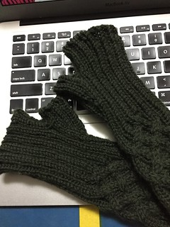 Fingerless Mitts | by Garyou