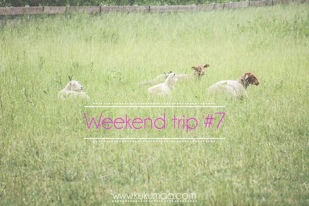 weekend trip 7