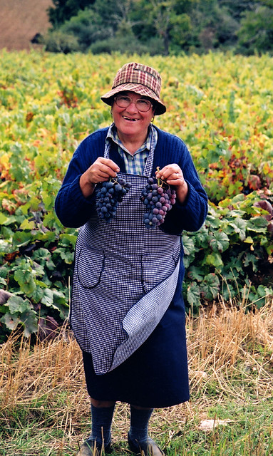 Old lady proudly shows off the grapes she's been picking in northern Portugal
