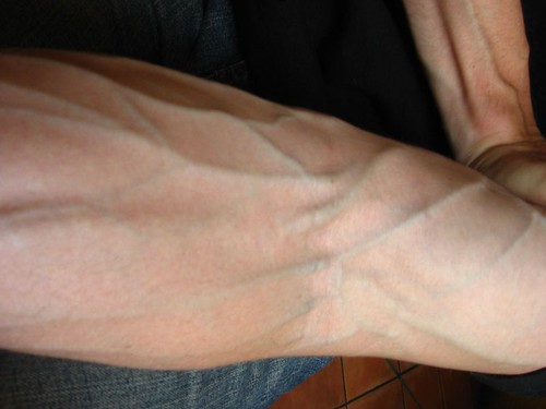Sexy Veins  I Think Veins Are Hot  Thomas  Flickr-7117