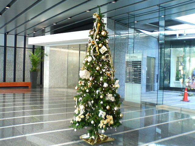 christmas tree in the office bldg i took this one at