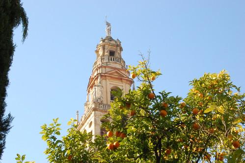 Campanario de la Catedral Córdoba