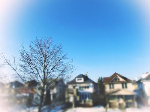 February 5 - Morning sky