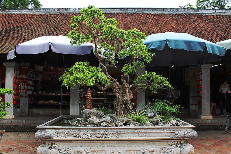 Văn Miếu - Temple of Literature, Hà Nội