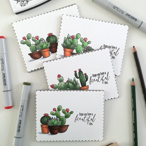 MFT sweet succulents card set