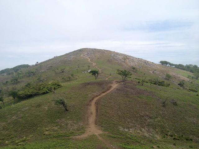霊仙山 山頂から最高点への道