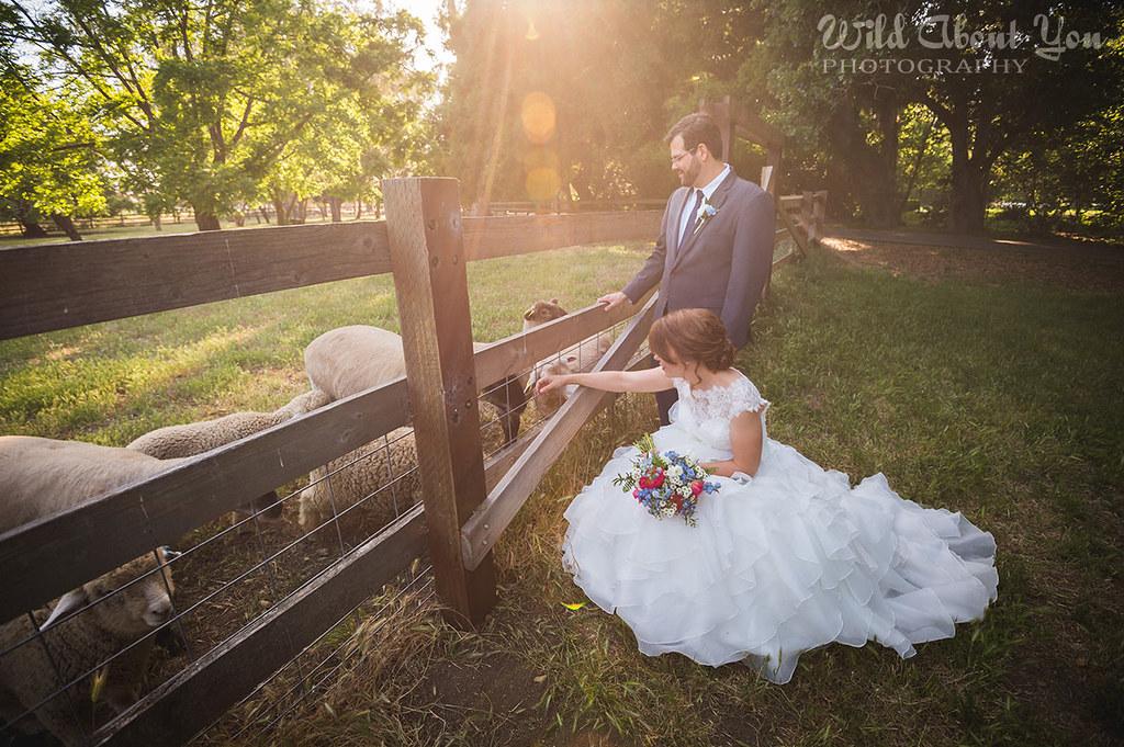 ardenwood-wedding038
