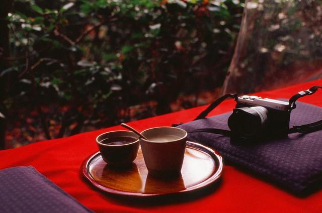 冬の清水には熱い甘酒を(#432しまみゅーら「冬の温もり」)