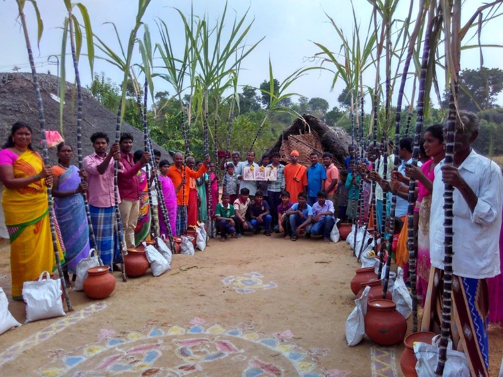 essay on pongal festival in tamil It is usually made during diwali, onam, pongal and other indian festivals typically consisting of bright colors, rangoli is a decorative design made in living rooms and courtyard floors during hindu festivals.