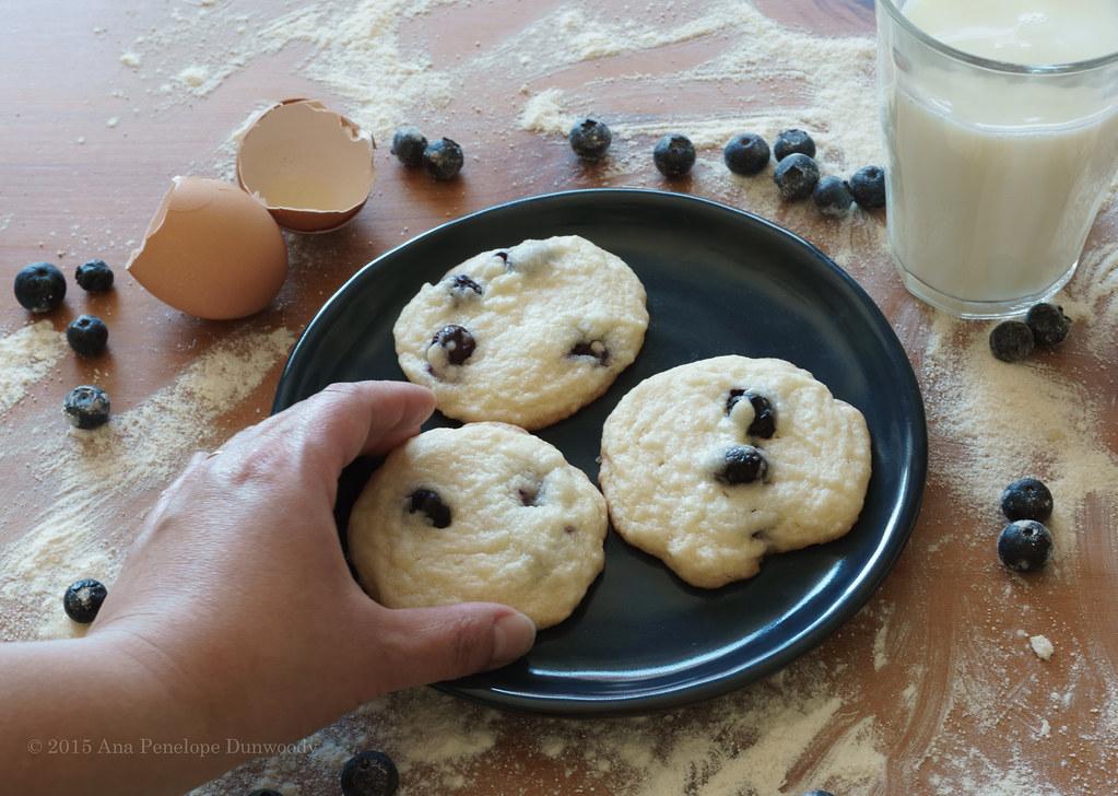 Blueberry Sugar Cookies