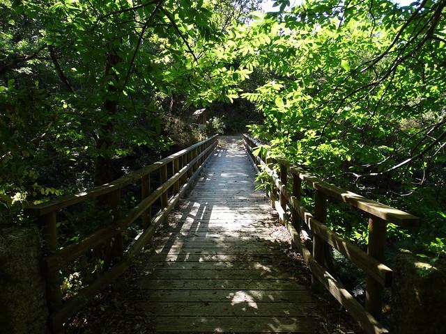 Puente de As Pías en la ruta SM.08 Ambalasaugas - As Pías
