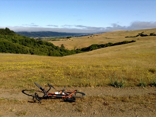 Tomales Bay and Inverness Ridge from Bolinas Ridge