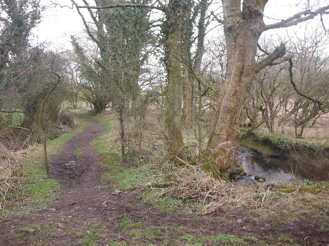 Path Away