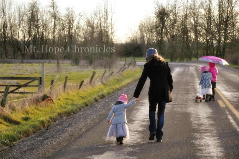 Christmas Walk @ Mt. Hope Chronicles
