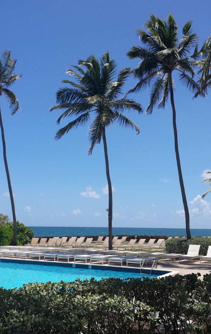 condado plaza hilton pool