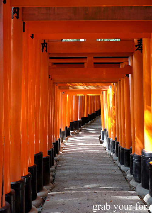 Neverending gates of Fushimi Inari Shrine, Kyoto, Japan