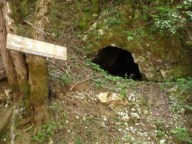 霊仙山 谷山谷登山道 こうもり穴