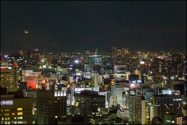 If you squint, you can see the Sky Tree