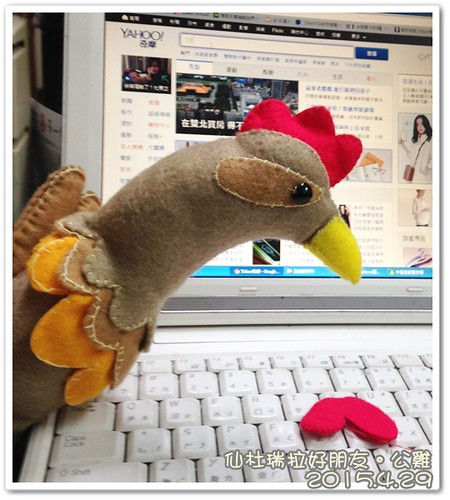 0429-公雞