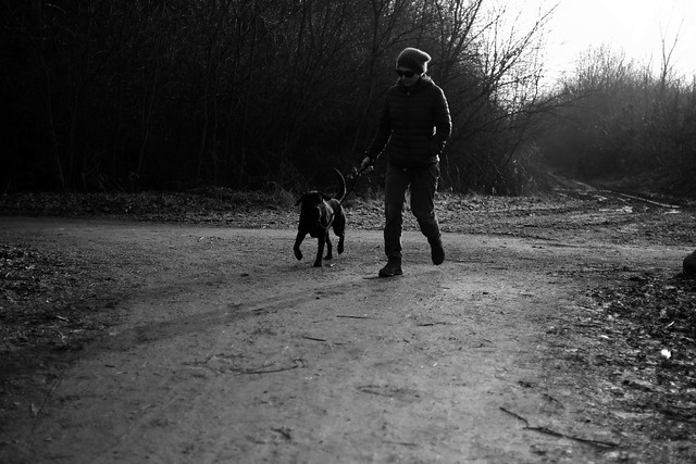 walking with black dog