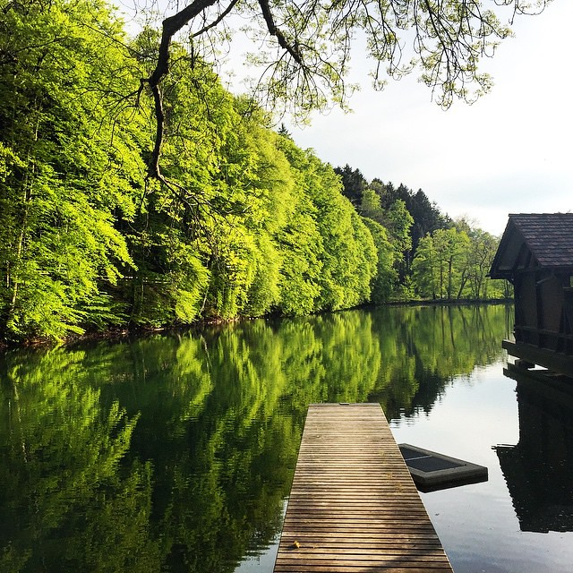 Good Morning Beautiful Nature Green Innerpeace Huzur Flickr