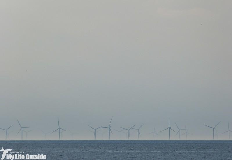 P1130560 - Titchwell Beach