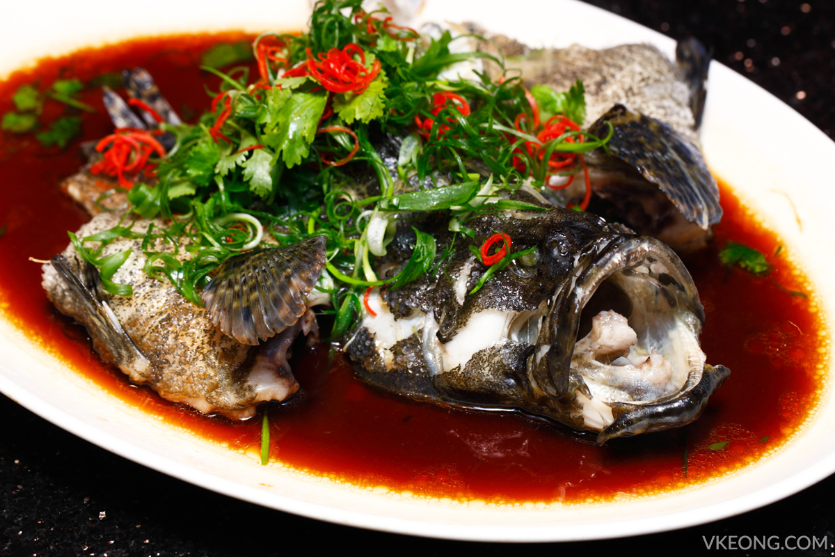 Steamed Sea Grouper with Superior Soy Sauce