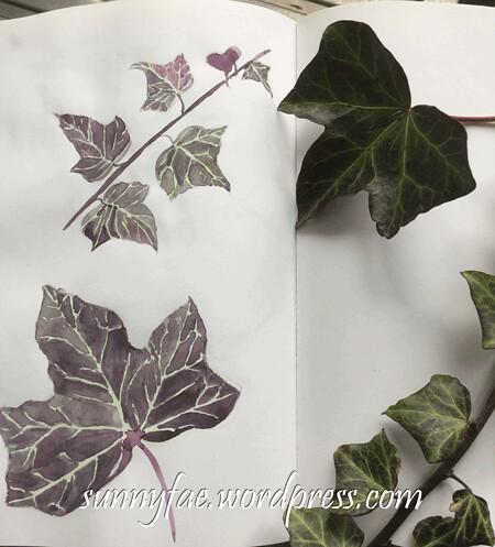 purple ivy in my sketch book