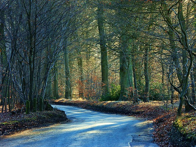 English country road | I stopped here when I saw the