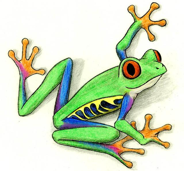 tree frog cartoon i drew this little guy instead of studyi flickr rh flickr com cartoon tree frog images Tree Frog Clip Art