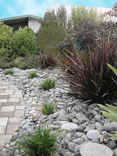Nz landscape design nzlandscapes com garden photos new z for Dry garden designs