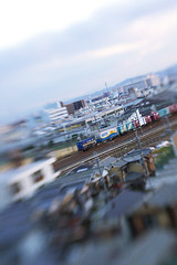 Lensbaby Test #1 | by sprout+
