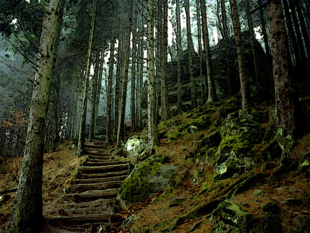 Mirkwood Lord Of The Rings