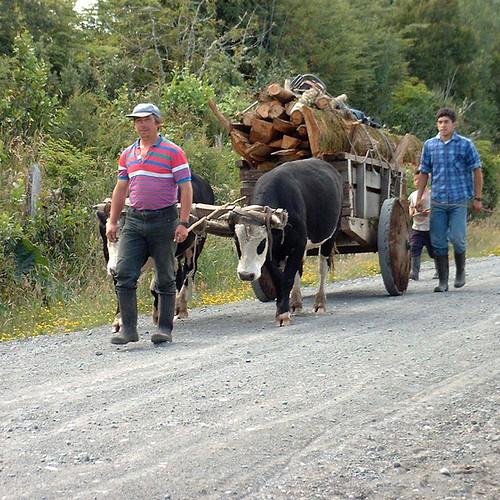 Carreta en Quiquel (Chiloe-Chile)   © by Leon Calquin www.le…   Flickr