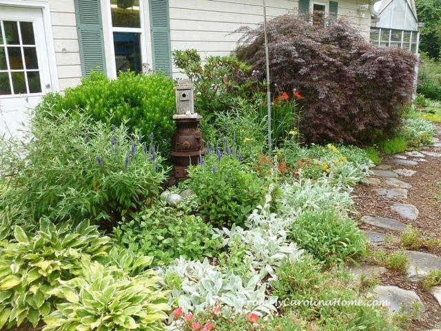 Mary Alice's Garden - 12