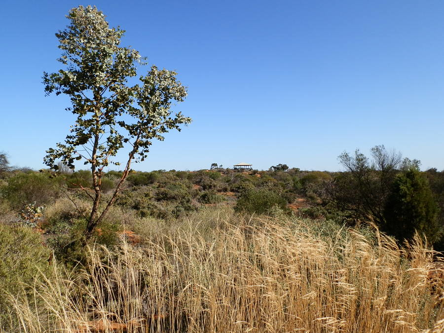 Arid Lands Botanic Gardens Lookout, Port Augusta
