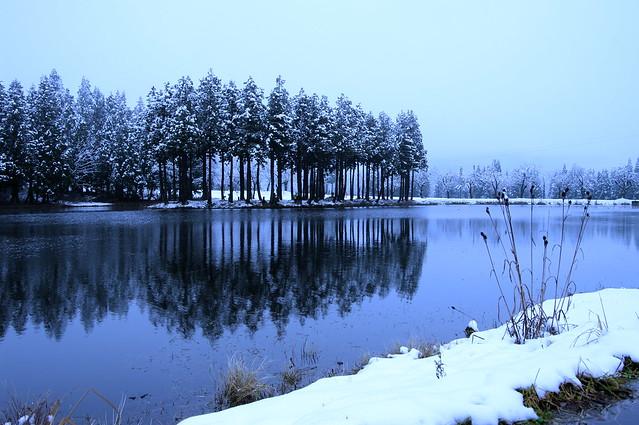 お松の池 初冬_2016-12