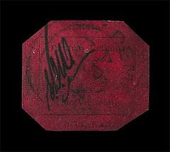 npm-magenta stamp