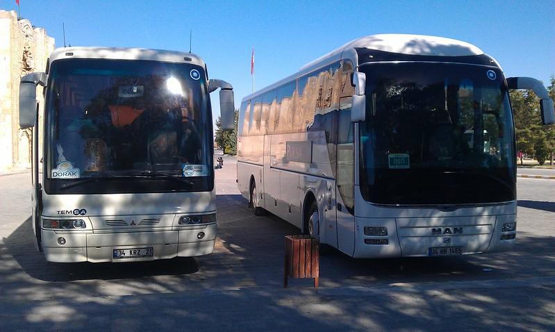 兩台都有藍眼睛圖樣的巴士