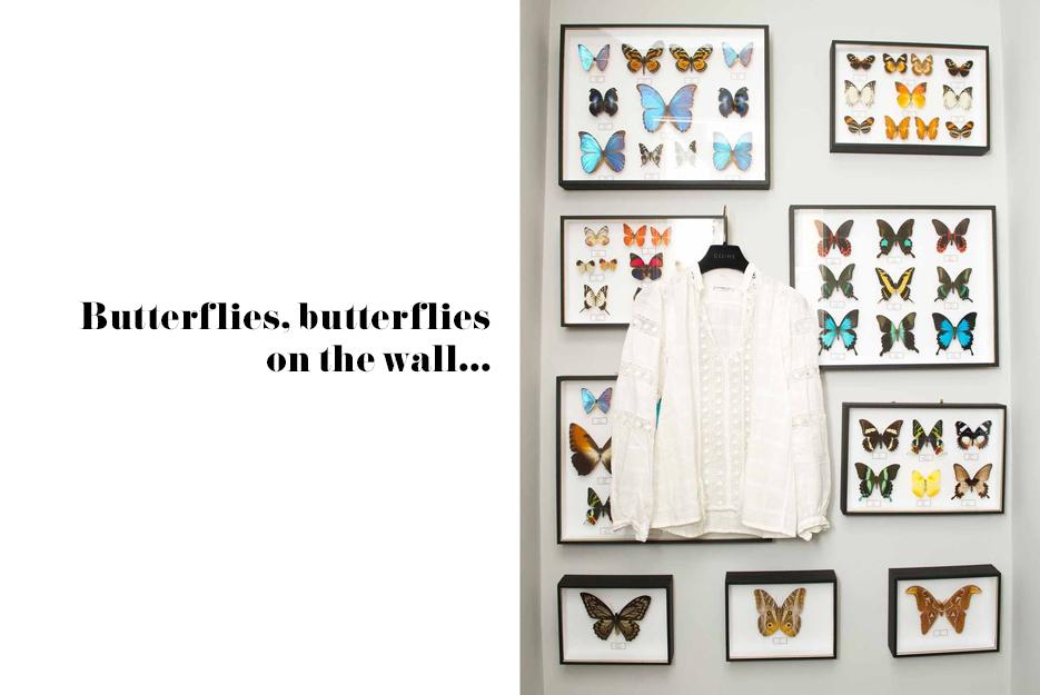 POSE-butterflies-1