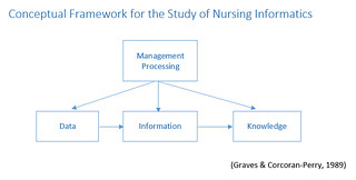 Conceptual Framework for Nursing Informatics
