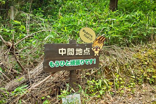 京山ソーラーグリーンパーク #7