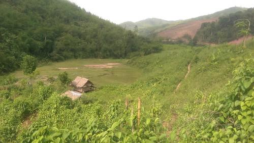 Luang Namtha, Laos