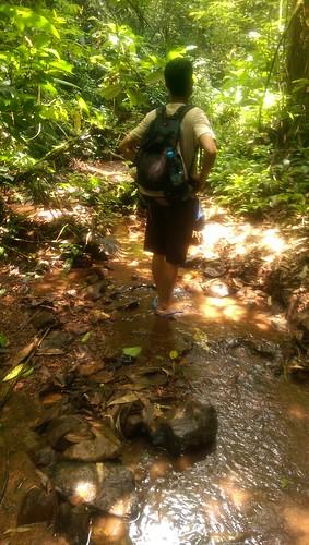 Jungle Trekking in Laos