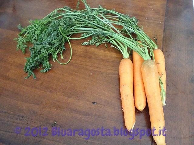 02-le mie carote col ciuffo