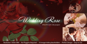 wedding rose small